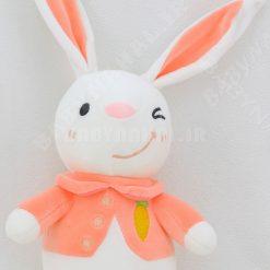 عروسك خرگوش نانو ژيله پوش 20 سانتي كد 5742